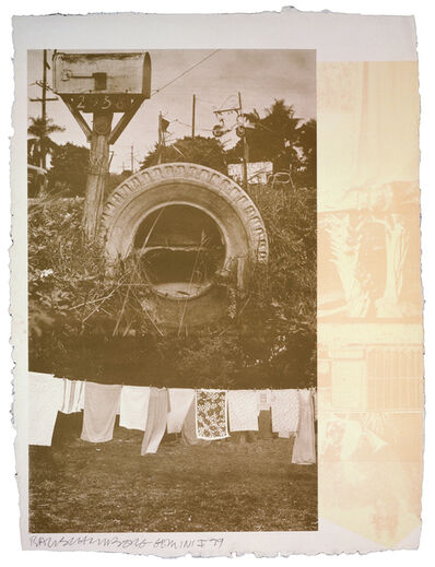 Robert Rauschenberg, 'Rookery Mounds - Mud Dauber', 1979