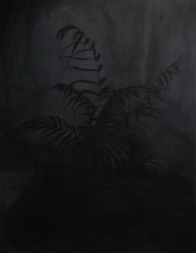 Lucía Delfino, 'Planta', 2019