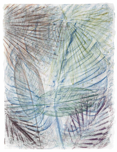 Sam Falls, 'Untitled (California Palm Rubbing 10)', 2014