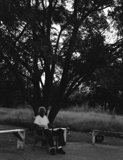 Debbie Fleming Caffery, 'Tree of Knowledge', 2014