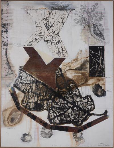Jitish Kallat, 'Palindrome/Anagram Painting'