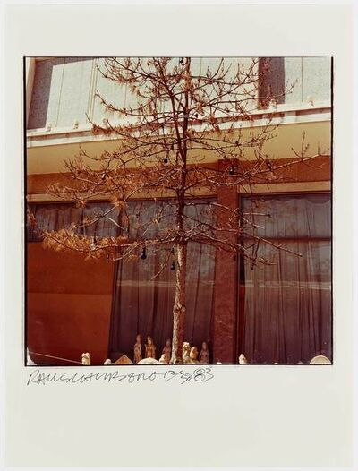 Robert Rauschenberg, 'Study for Chinese Summerhall - Tree & Bulbs', 1983