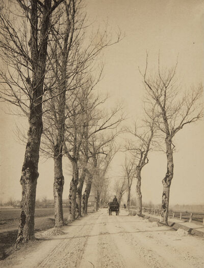Alfred Stieglitz, 'November Days', 1887-printed 1895