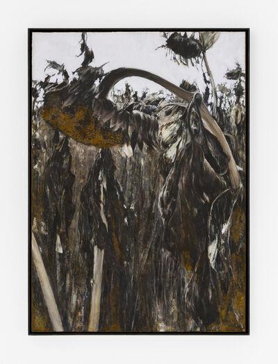 Jens Rausch, 'Feldstudie I', 2018