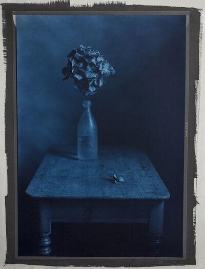 Kenro Izu, 'Still Life 1126B', 2004