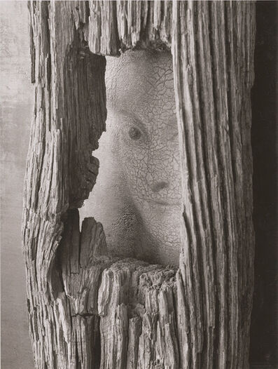 André Kertész, 'New York, October 22', 1959 / 1960c