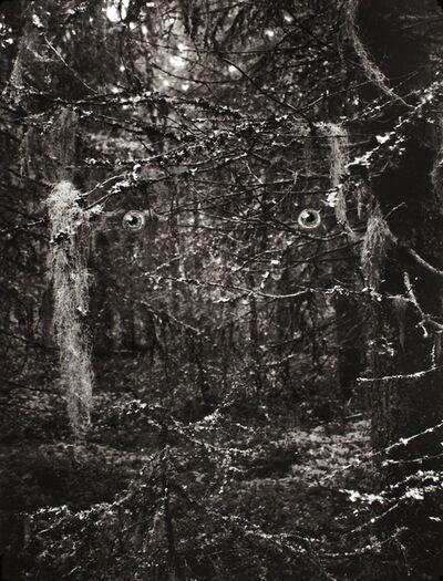 Ulla Jokisalo, 'Spirit of the Forest, 2', 2013