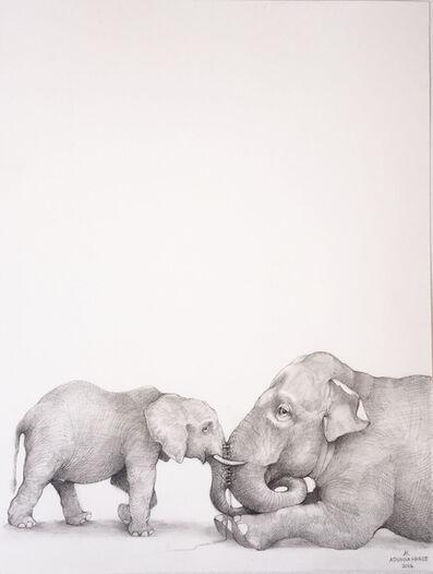 Adonna Khare, 'Elephants '
