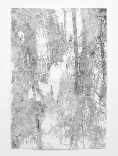 Anne Allen, 'Big Cypress IB', 2013