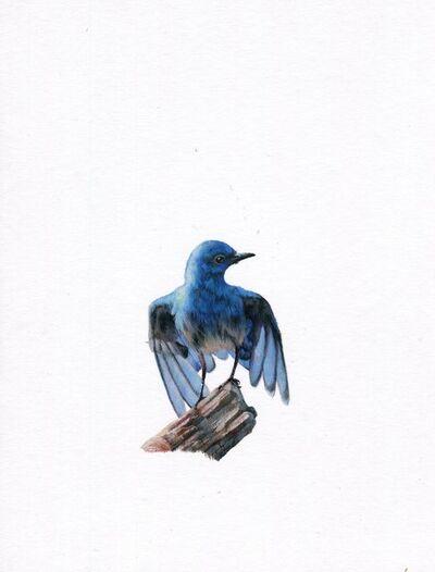 Dina Brodsky, 'Bluebird', 2019