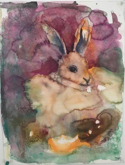 Barbara Friedman, 'Untitled ( Bunny)', 2020