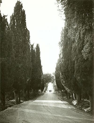 Marcel Bovis, 'Near Montpellier, France', 1940s/1940s