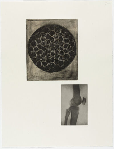Terry Winters, 'Fourteen Etchings 13', 1989
