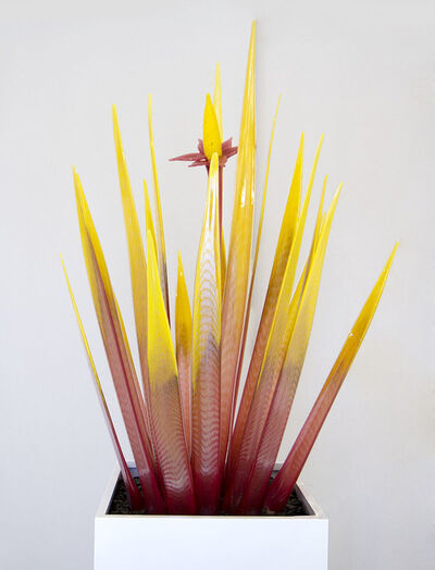 Jesse Kelly, 'Strawberry Lemonade Agave', 2020