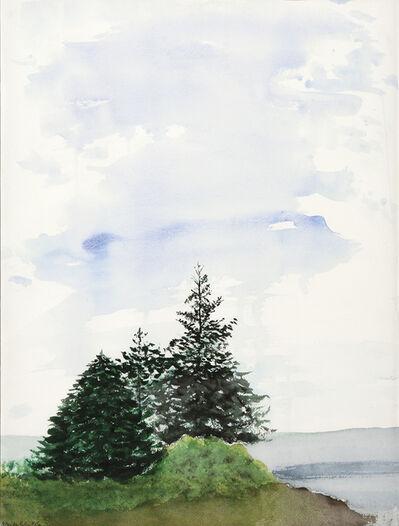 Maude Robin McCoy, 'Wheeler's Bay Spruce'