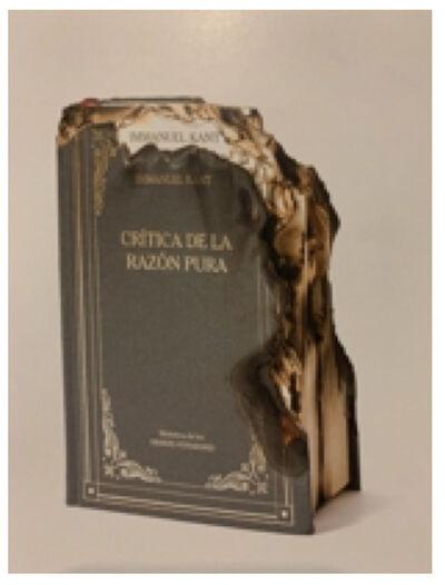 Horacio Zabala, 'Crítica de la razón pura', 2014
