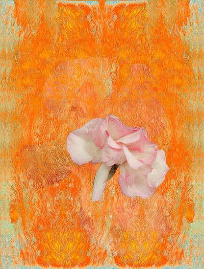 Ann Pachner, 'They will become Pink Mist (detail)', 2016