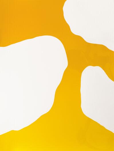 Marco Breuer, 'Untitled (C-1811)', 2016