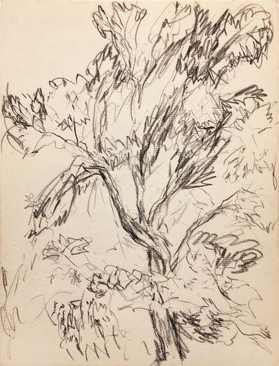 Myron Stout, 'Untitled'