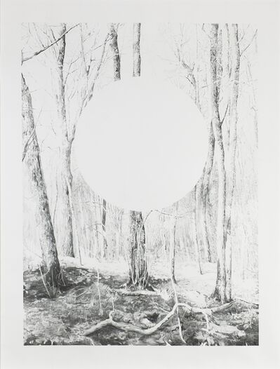 Axel Antas, 'Forest and Ellipse Obscured', 2016