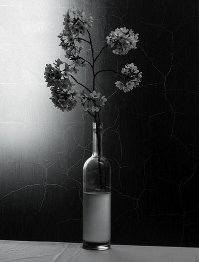 Titus Brein, 'Luce Della Luna I'