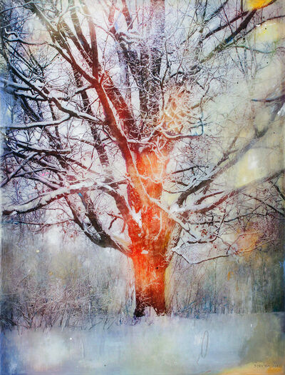Stev'nn Hall, 'Winter Tree AP2', 2018