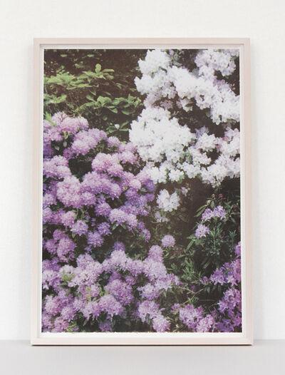 Elizabeth Corkery, 'Purple/White Florals', 2013