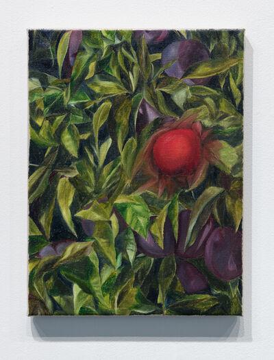 Srijon Chowdhury, 'Apple', 2018