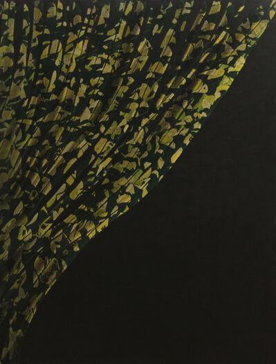 Wouter van der Laan, 'untitled', 2016