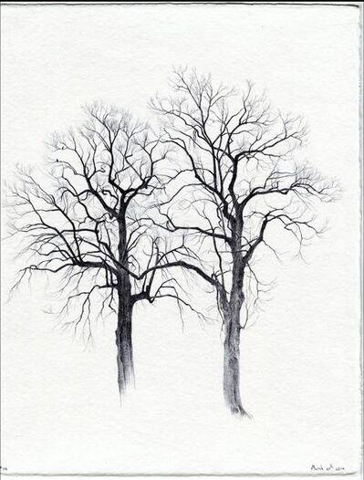 Dina Brodsky, 'Secret Life of Trees', 2016