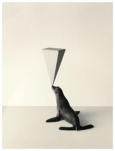 Chema Madoz, 'Untitled', 2012