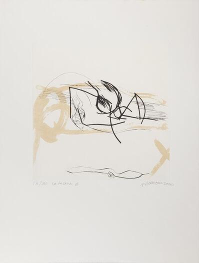 Francine Simonin, 'Ca de Canes 6', 2000