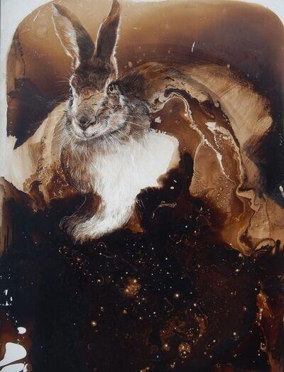 James Griffith, 'Rabbit in Starlight', 2019
