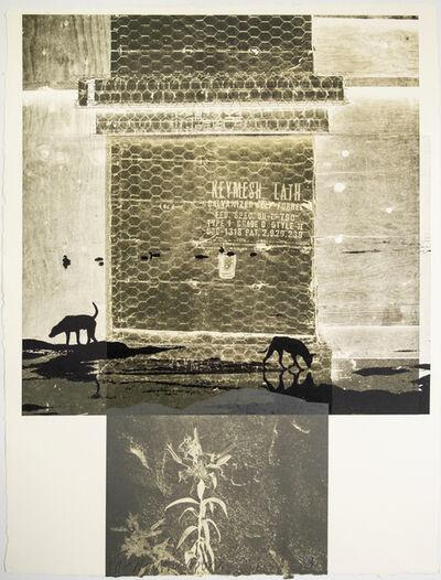 Robert Rauschenberg, 'Lily Scent', 1981