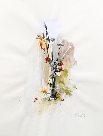 Samantha Walrod, 'Flower Shadow 8', 2019