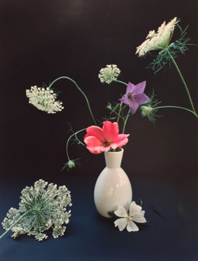 Horst P. Horst, 'Platycum, Betty Pryor Rose, and Queen Anne's Lace', ca. 1985