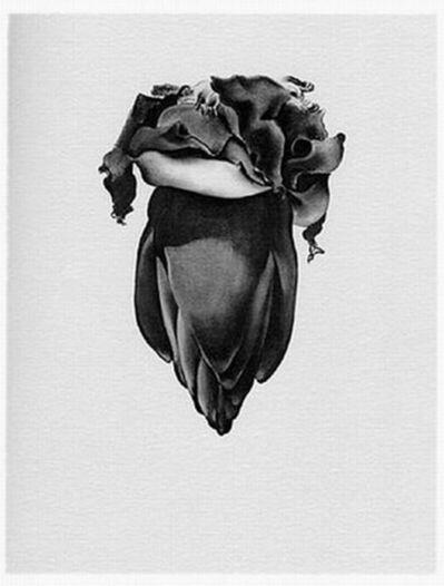 Georgia O'Keeffe, 'VIII Banana Flower', 1968