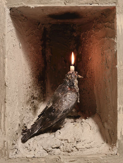 Amon Yariv, 'Pigeon to Candle', 2015