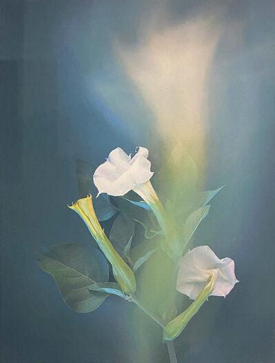 Joyce Tenneson, 'Calla Lilies', 2021