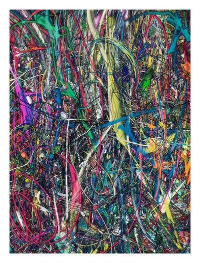 Florian Maier-Aichen, 'Untitled (Lasso Painting #3)', 2016