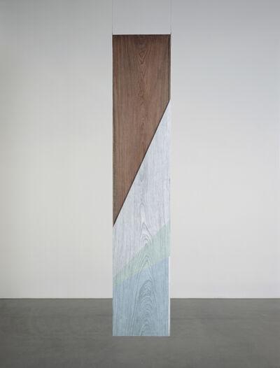 Hu Xiaoyuan 胡晓媛, 'Wood/The Vortex beneath the Vortex No. 5', 2014