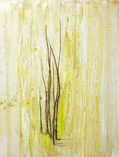 Claudio Palmieri, 'Grass Marks', 2010