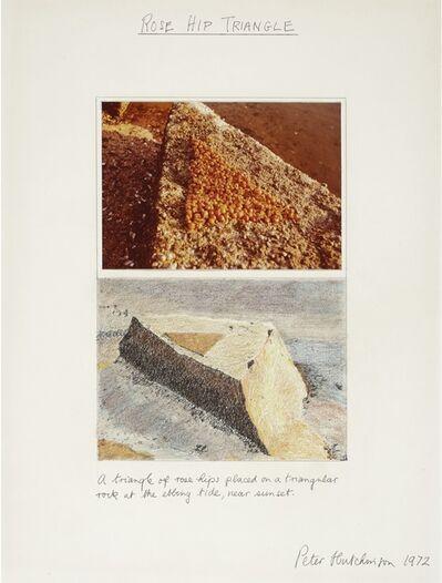 Peter Arthur Hutchinson, 'Rose Hip Triangle'