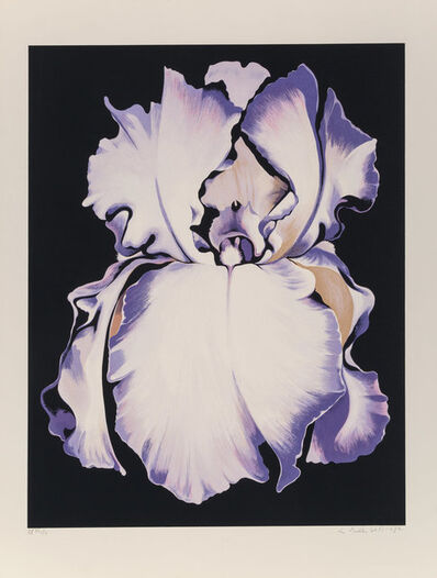 Lowell Nesbitt, 'White Iris on Black', 1982