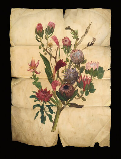 Derrick Guild, 'Ascension Plant V (Broughton Street Botanical)'