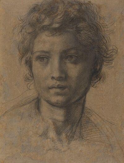 Andrea del Sarto, 'Head of Saint John the Baptist', ca. 1523