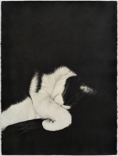 Karl Haendel, 'Cat (mirrored)', 2017