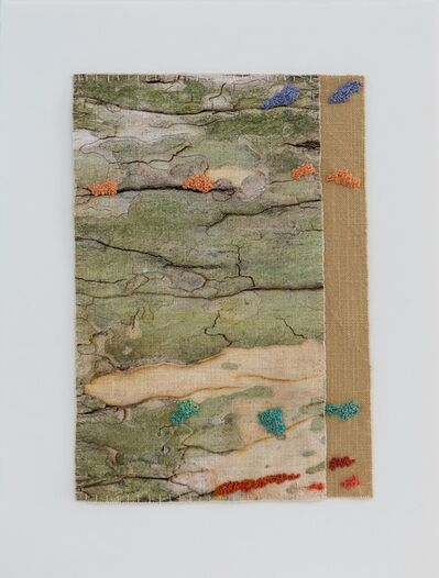 Laurie Lambrecht, 'Bark/Cloth: London planetree, NYBG', 2019