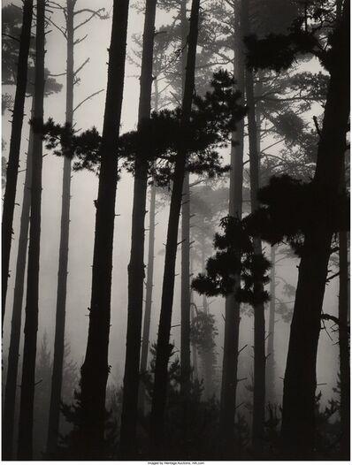 Brett Weston, 'Pines in Fog, Monterey', 1962