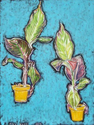 Joseph Plaskett, 'Plant in Yellow Pot - Double', 2010